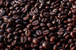 coffebeans Beans cafe coffe rosting