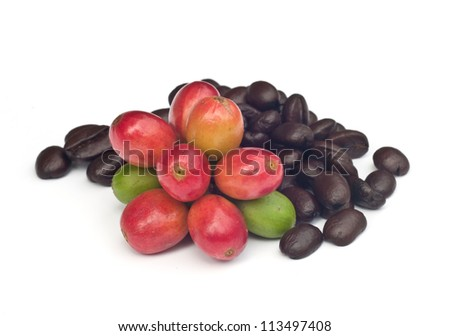 coffee beans and red  ripe coffee Isolated  on white background.