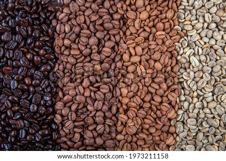 Coffee beans are double roasted. Coffee papers showing various roasting stages from green beans to Italian roast. Stockfoto ©