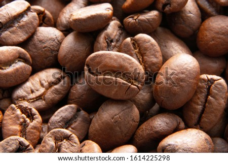 Coffee beans background / Coffee beans to grind / Roasted coffee, brown seeds close-up. Hot caffeine drinks