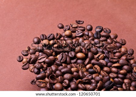 Coffee beans closeup on pastel background