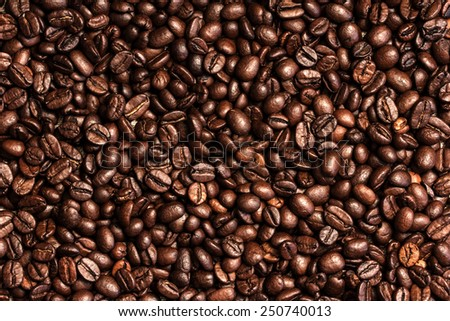 Coffee Beans./ Coffee Beans.