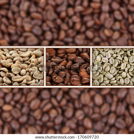 coffee beans collage