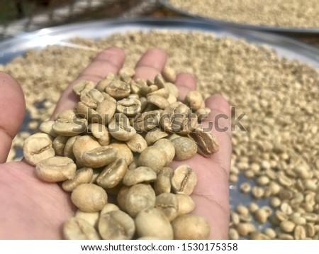 coffee beans , Green beans Arabica