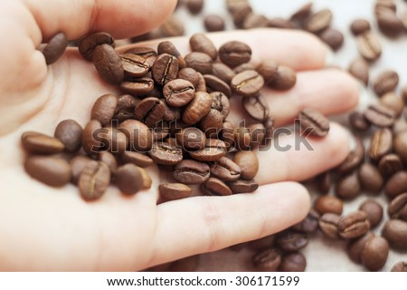 Coffee beans on a palm. Many coffee beans on hand. Female hand with coffee beans. Roasted coffee. Coffees. Barista. Scattered coffee beans. Selected coffee beans.