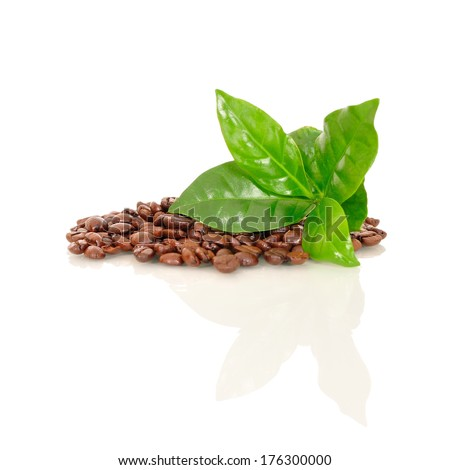 coffee beans with a piece of coffee on white background