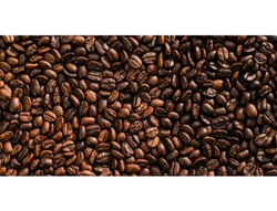 Coffee contains a number of useful nutrients, including riboflavin (vitaminB-2), niacin (vitamin B-3),magnesium,potassium, and various phenolic compounds, orantioxidants