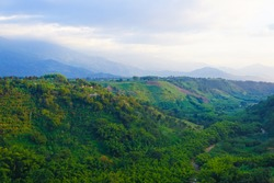 Coffee Cultural Landscape of Colombia  - Valley In Armenia