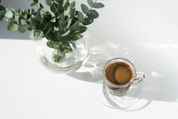 Coffee cup and eucalyptus leaves in a vase top view on a white background with floral shadows.copy space