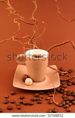Coffee cup with coffee-beans on toning brown shaggy surface