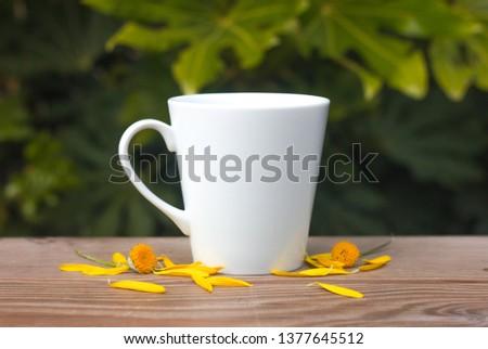 Coffee mug mockups #1377645512
