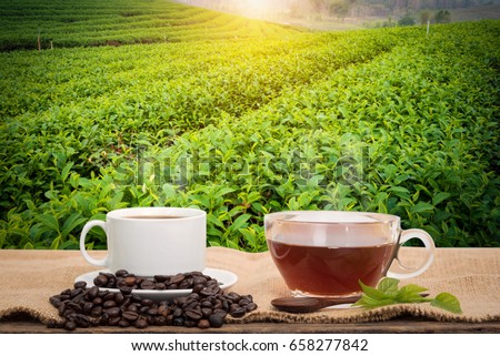 Coffee or tea in the morning on the wooden table and the Tea plantation background #658277842