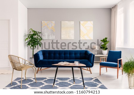 Coffee table with open book and tea mug standing on carpet in real photo of bright sitting room interior with fresh plants, gold chair and navy blue lounge #1160794213