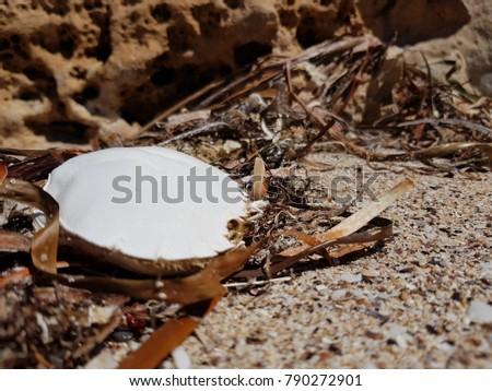 Coffin Bay National Park #790272901
