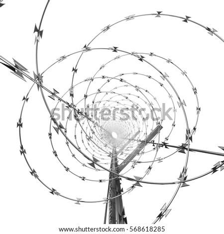 Coil of Steel Barbed Wire on a Metal Fence. 3d Rendering Isolated on White Background