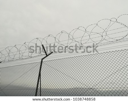 Coiled barbed wire #1038748858