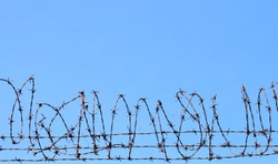 Coiled barbed wire fencing against a blue sky background