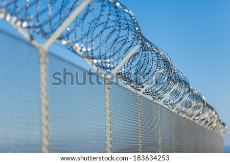 Coiled razor wire with its sharp steel barbs on top of a wire mesh perimeter fence ensuring safety and security, preventing access or the escape of prisoners, blue sky background #183634253