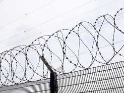 Coils of sharp razor wire on a wire mesh fence. Maximum security facility. Prison, penitentiary, border control and detention concept. Perimeter fencing for restricted access and intrusion prevention.