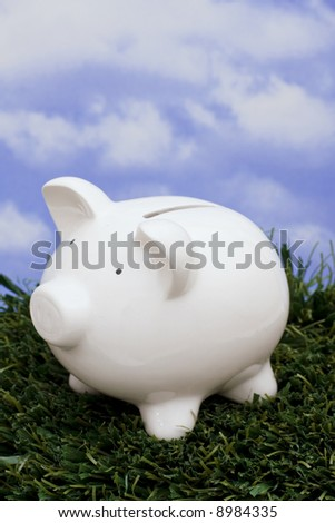 Coin bank sitting on grass with sky background