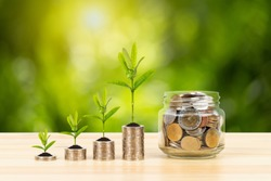 Coin glass jar container and stack on wooden desk, saving concept, on green tree background, with hand putting money
