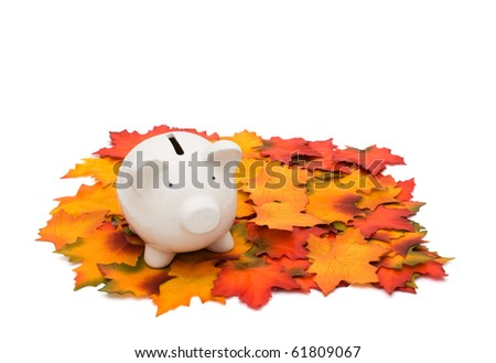 Coin piggy bank on fall leaves isolated on white, Fall Savings