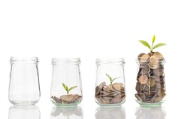 coins and plant in bottle, Business investment growth and saving concept.