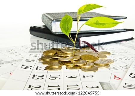 coins calendar money
