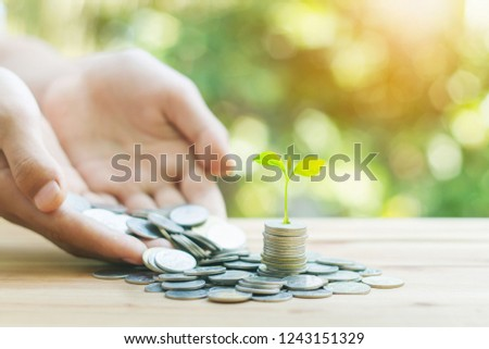 coins growth up to profit concept investment and finance for saving or investment