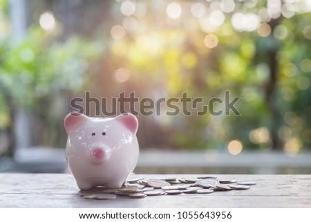 Coins in piggy for money saving financial concept