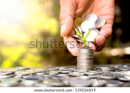 Coins placed and sprouts on top. While a men's hand pouring coins. #539026819