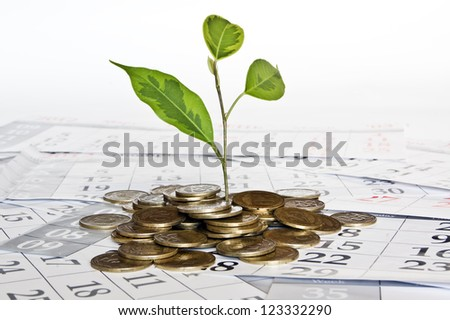coins plant