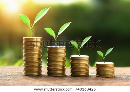 coins with money growing plant concept finance and banking #748163425