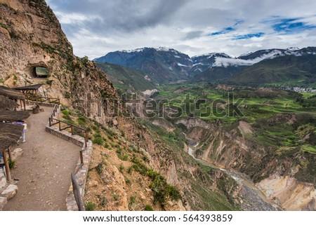 Colca Canyon (Cañon del Colca), Peru. Agricultural terraces