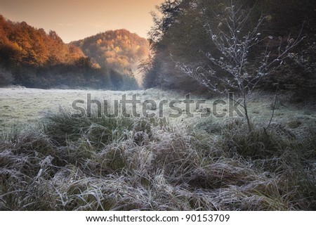 cold autumn morning with frozen rime and the sun rising