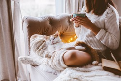 Cold autumn or winter weekend while reading a book and drinking warm cocoa with marshmellows. Lazy day with cat on the sofa. Cosy scene, hygge concept.