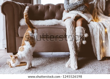 Cold autumn or winter weekend while relaxing with cat on a couch. Lazy day in knitted socks at home. Cosy scene, hygge concept. #1245526198