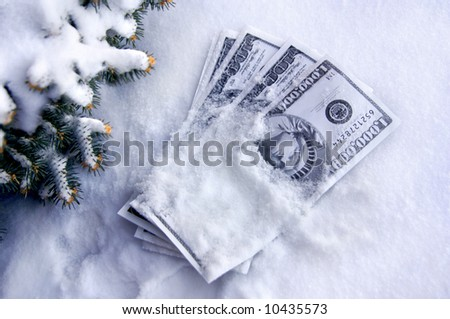 Cold cash lays in the snow.  Fir branches covered in snow, edge left side of frame.