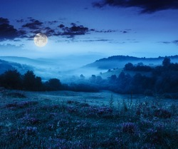 cold fog on forest near mountains at night in moon light