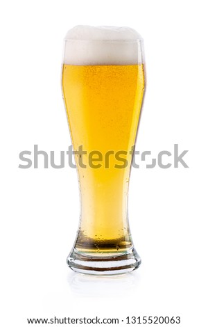 Cold light lager beer with drops and foam in glass. isolated   #1315520063