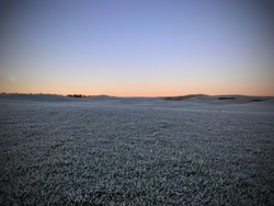 Cold, peaceful and quiet scene or landscape of Nordic morning sun over field with frosty grass. Empty space for text.