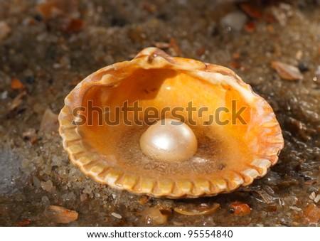 cold pearl