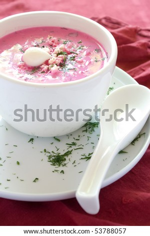 Cold vegetable soup with beet, cucumber, radish and egg