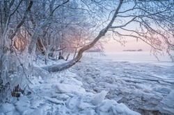 Cold winter landscape with snow, ice and tree outdoor