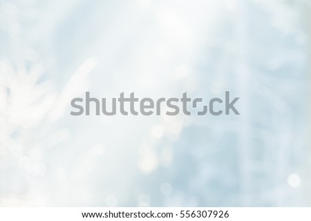 COLD WINTRY PARK BACKGROUND
