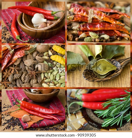 collage colorful spices