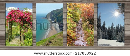 Collage - four seasons on wooden board background. rambler rose arch, coastal landscape, alpine hiking trail in autumn, wintry forest glade.