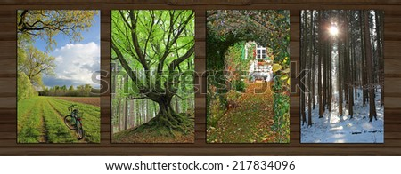 Collage - four seasons on wooden board background. rural spring landscape, gnarled tree, garden view, wintry forest. - Shutterstock ID 217834096