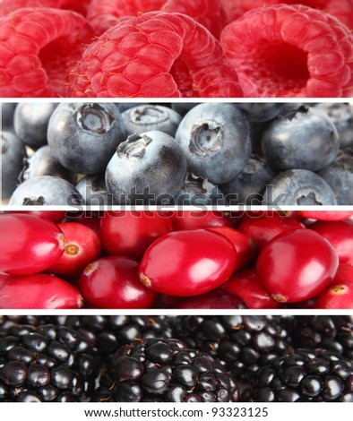 Collage from fresh berries
