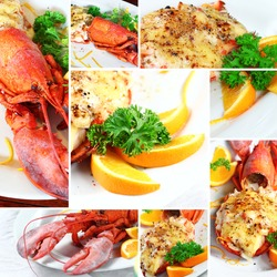 Collage Lobster thermidor salad, Macro closeup for design work